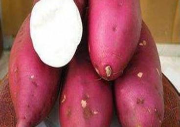 红薯颜色不同营养也不同?