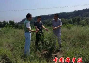 平昌县市场监督管理局开展地理标志专用权保护工作